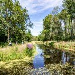 כפרי נופש – רשת Topparken
